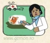 Orvosi kivizsgálás